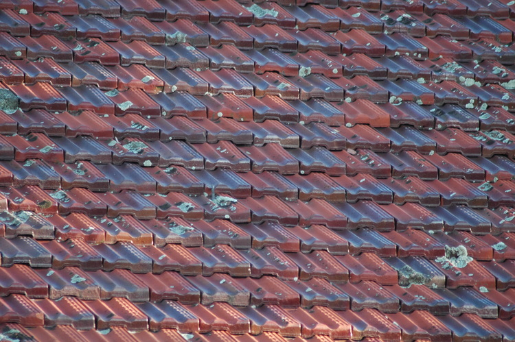A pattern of roof tiles