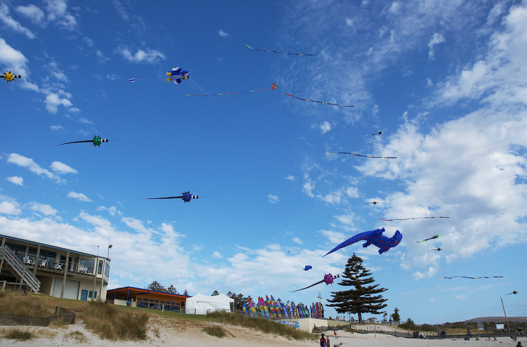 Large kites peppering the sky