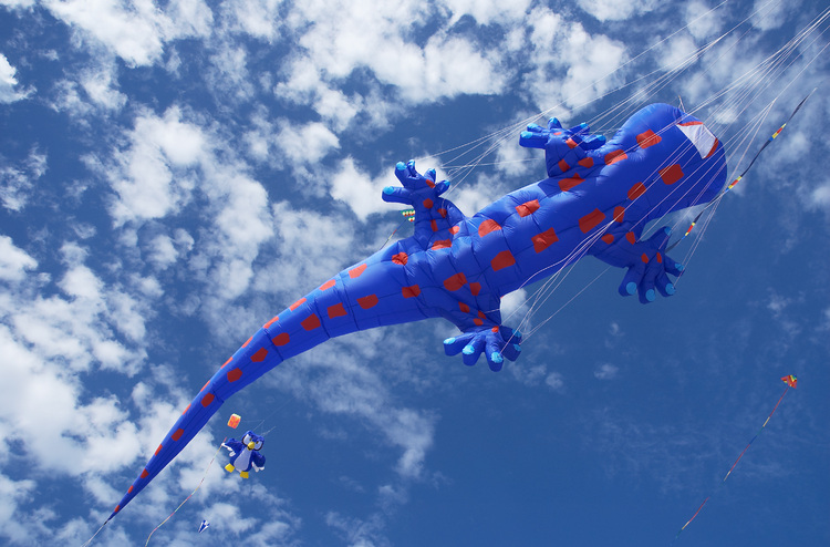 Large kite in the shape of a gecko