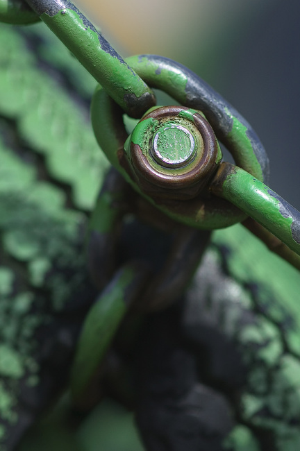 Closeup of a painted nut, bolt, and chain